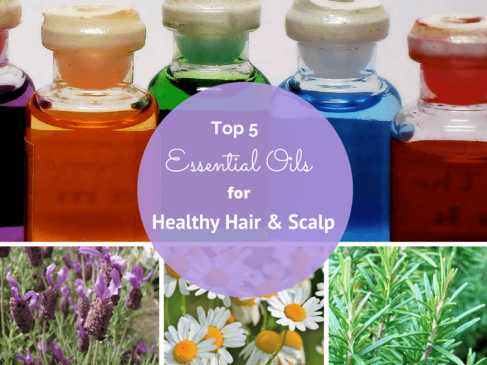 Top-5-essential-oils1